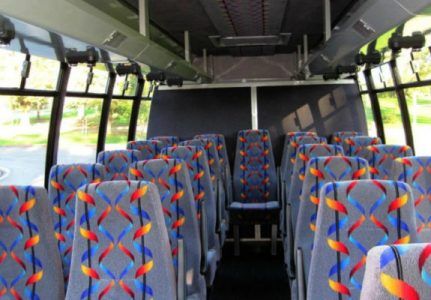 20 Person Mini Bus Rental River Ridge
